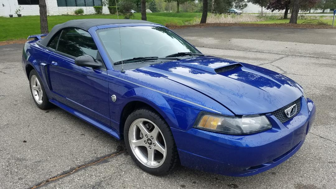 2004 Mustang My Site